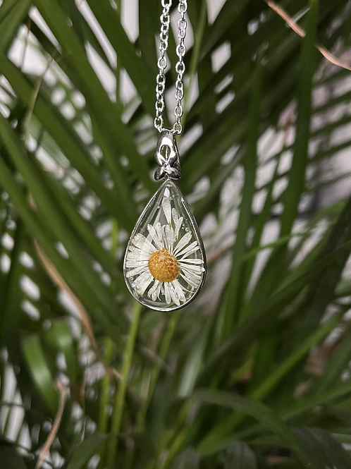 Pressed Flower necklace - daisy
