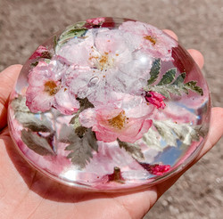 Domed Paperweight