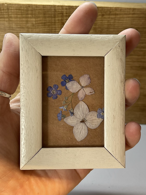 Mini pressed flower frame