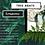Thumbnail: Tree Agate  Bear