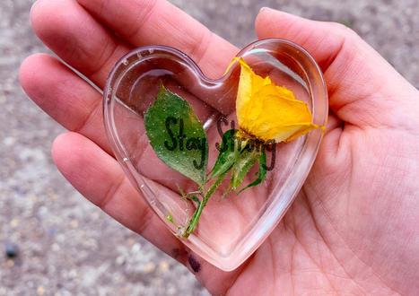 6cm (mini) heart