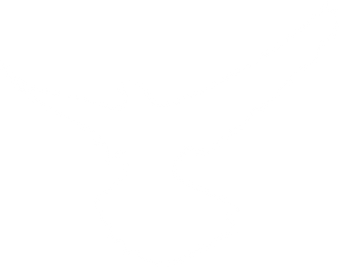 sound heart records bird white.png