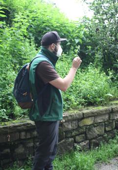 Wildkräuterwanderung im Wald - 06.06.2021 #5