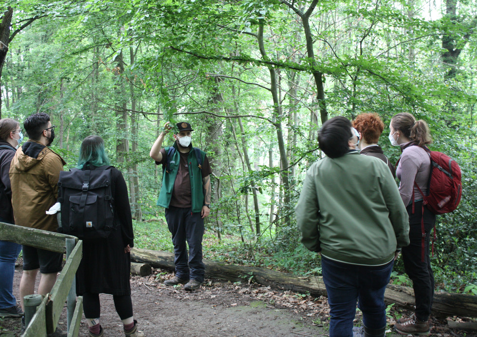 Wildkräuterwanderung im Wald - 06.06.2021 #13