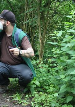 Wildkräuterwanderung im Wald - 06.06.2021 #10