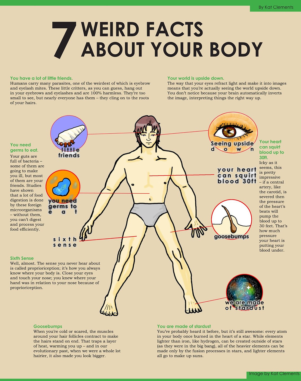7 weird facts about your body