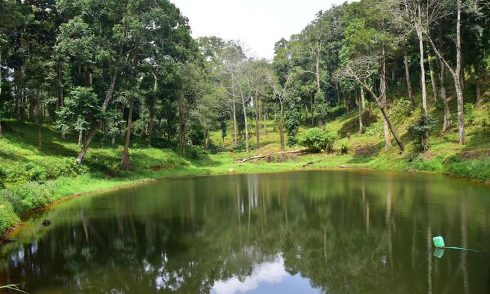check dam kailas estate