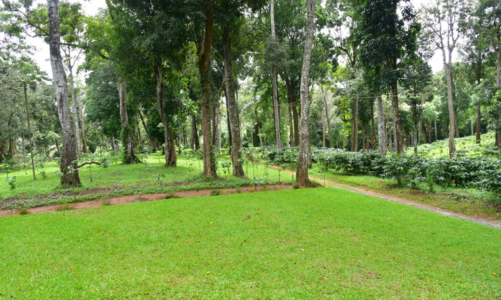 Resort surrounding