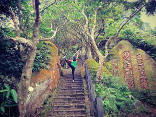 Leo núi Voi Đài Bắc - Đài Loan ngắm tòa tháp 101