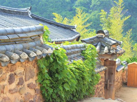 Quay ngược thời gian tại làng cổ Hahoe - Andong Hàn Quốc