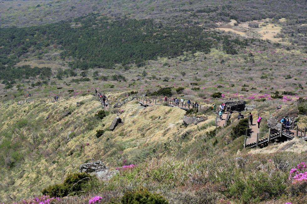 Quang cảnh từ trênnúi Hallasan - đảo Jeju