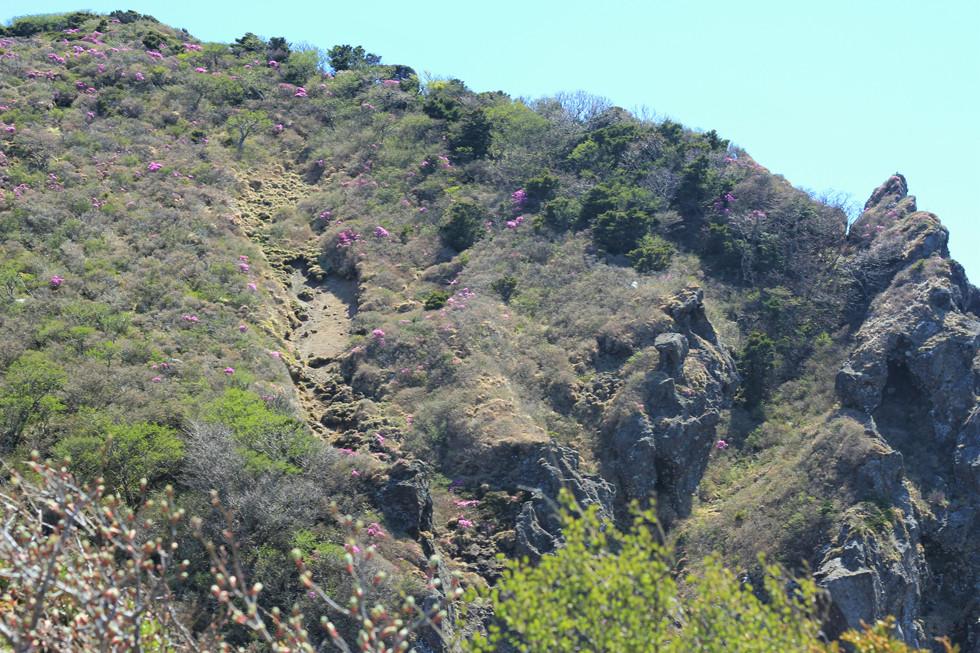 Vách đá dựng đúng -núi Hallasan - đảo Jeju