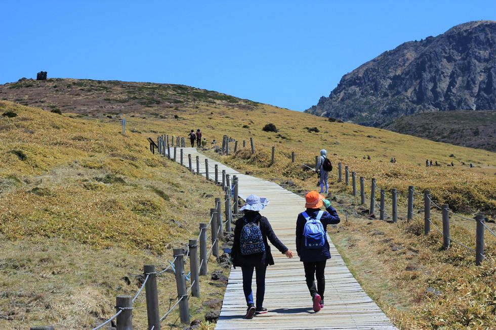 Thảo nguyên mở rộng - núi Hallasan - đảo Jeju