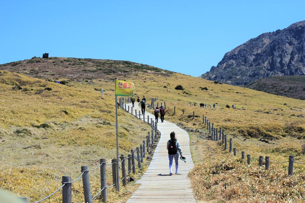 Đường đi xuống núi Hallasan - đảo Jeju
