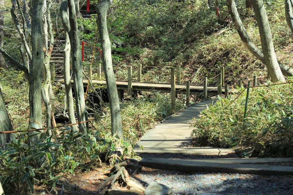Đường leonúi Hallasan - đảo Jeju