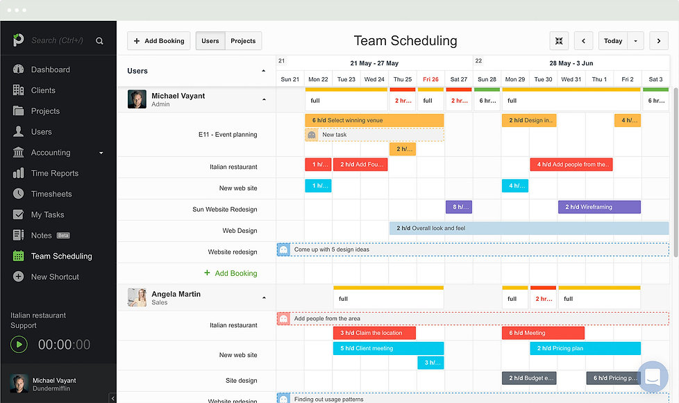 Paymo screenshot, an online project management tool