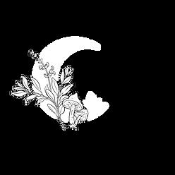 Modern Mystical | Melbourne | Crystals, space cleansing Sage, Palo Santo & Selenite, Hamsa Incense Holders, Orgonites & Botanical Domes for transmuting negative energies