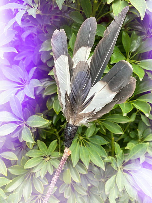 Feather Fan with Black Tourmaline Crystal