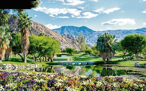 Palm-Springs-2-960x601.jpg