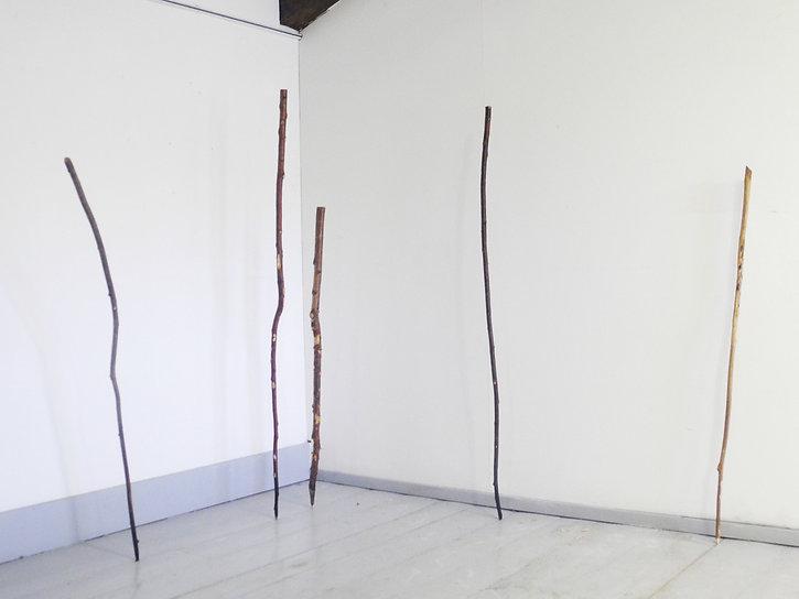 sticks2.jpg