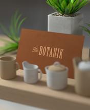 The Botanik Logo Design by 2xr