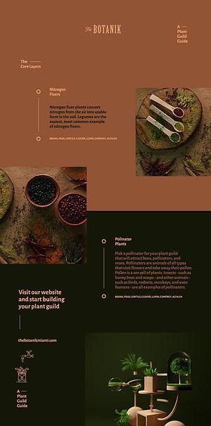 Logo-Design-The-Botanik-Plant-Guild-by-2xr-design-miami-ricky-rocha-loures-henrique-saldanha