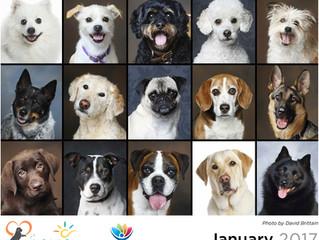 Calendar a great success!