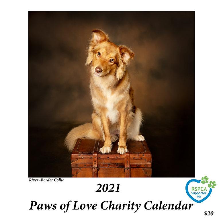 2021 Paws of Love Charity Calendar
