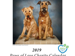 2019 Paws of Love Charity Calendar