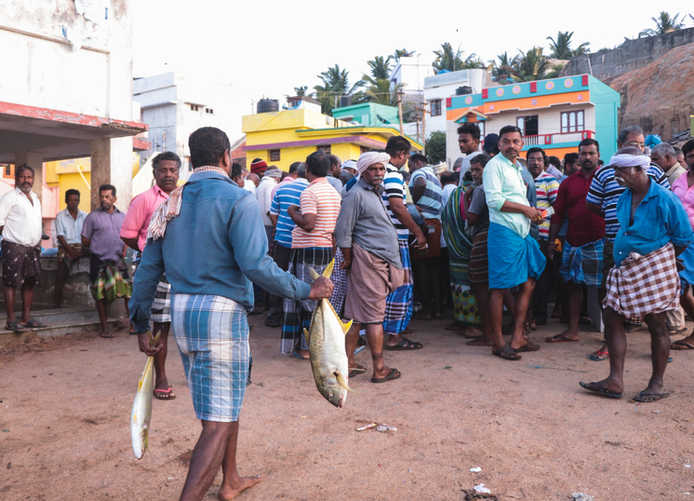 Kadiapattinam, Kanniyakumari, 2018.