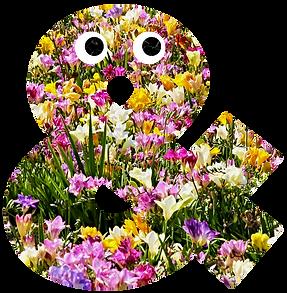 FlowerAmpy2.png