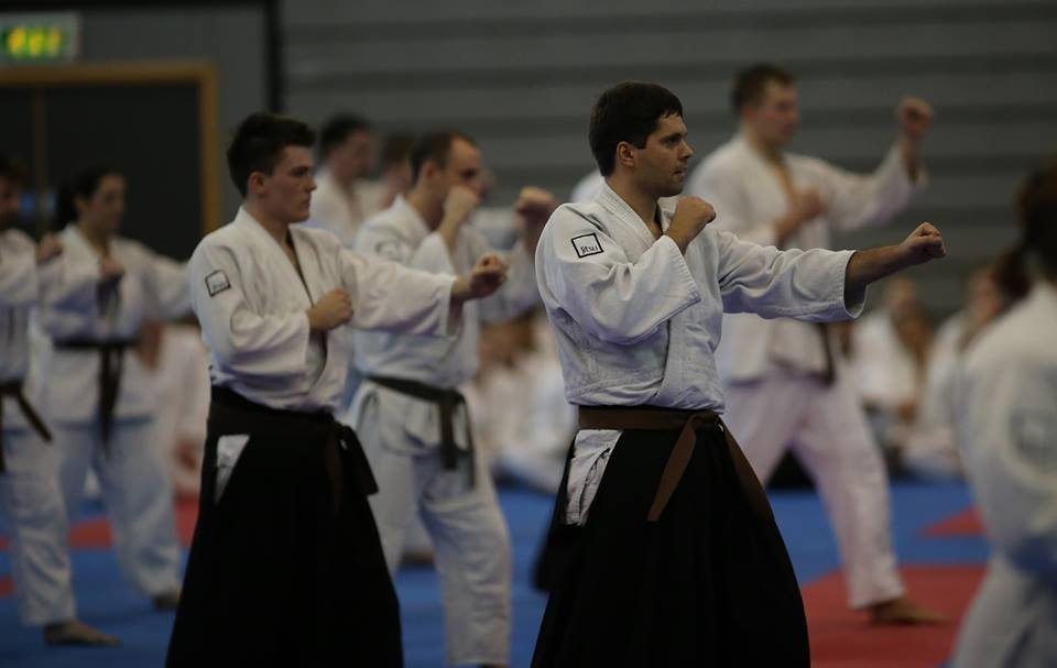 Brown Belts