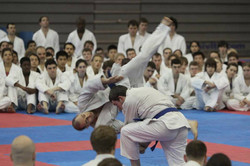 Blue Belt demo