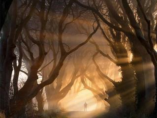 El camino libre (Intuición)