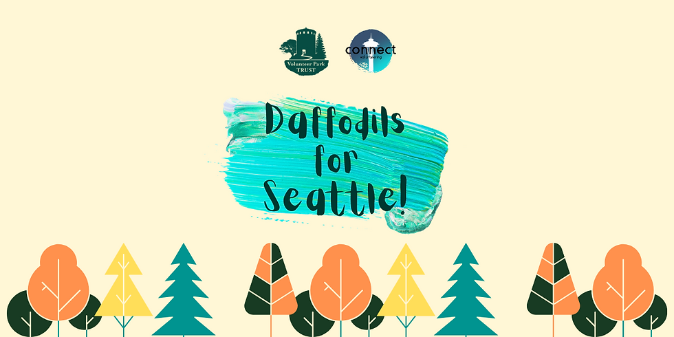 Daffodils for Seattle!