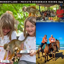 MonkeyLand + Private Horseback Riding