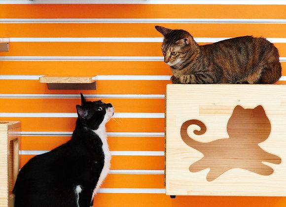 Cat Wall Box
