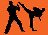 Studio V Martial Arts Demo's and classes, Bully Prevention,Stunt Performers, Combat Shows