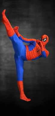 Studio V Character Division, Superheroes and Villains, Stunt Performing, Child Entertianment in Myrtle Beach, Combat Shows