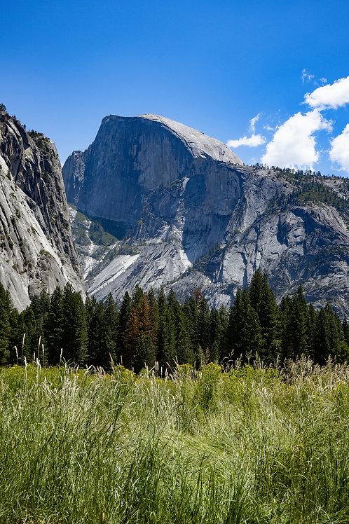 2 Half Dome from Cooks meadow