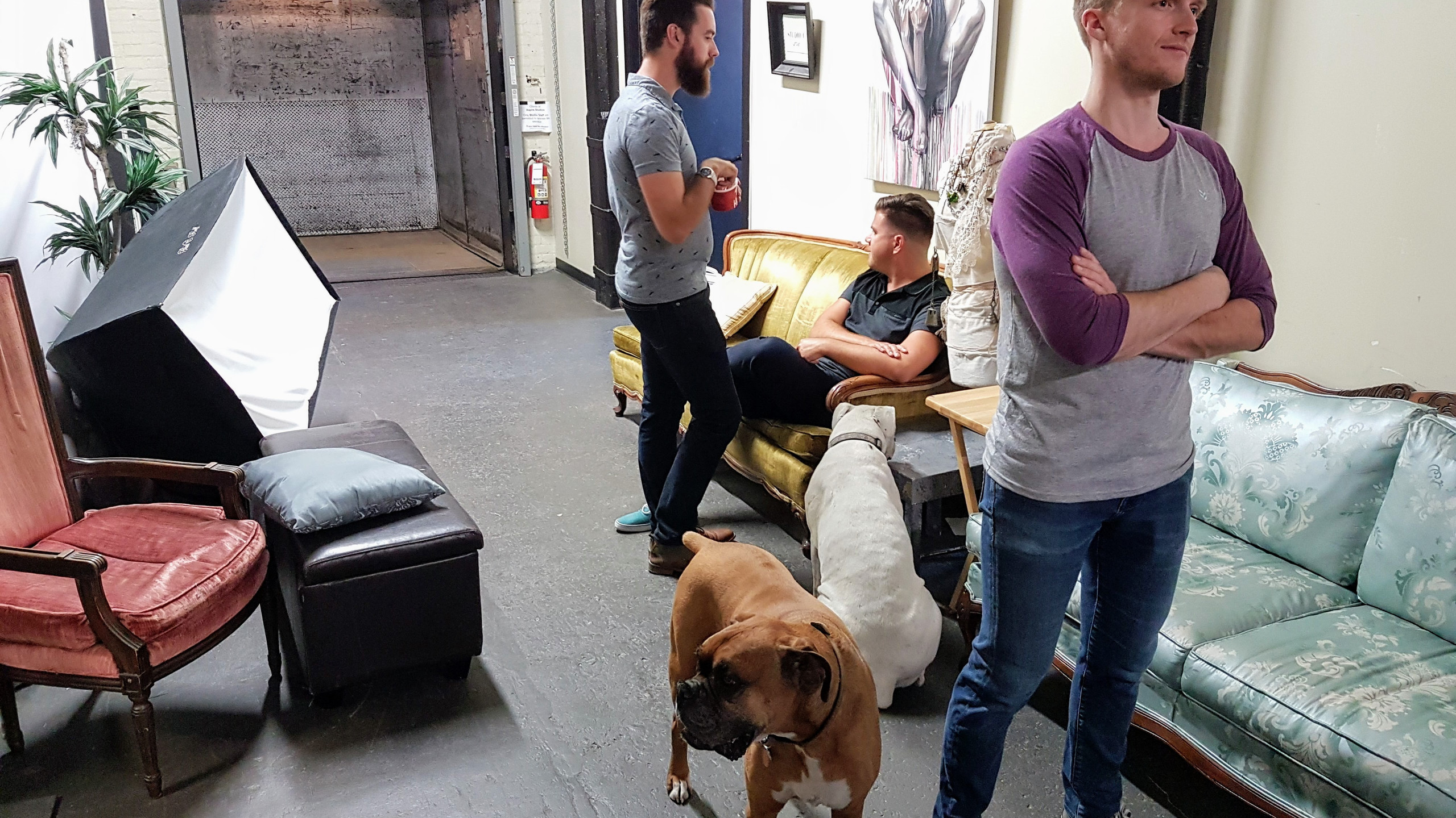 Waiting to get started. There are studio dogs that roam free!