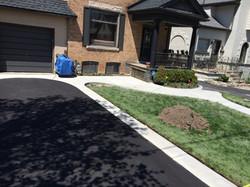 Asphalt and Plain Concrete