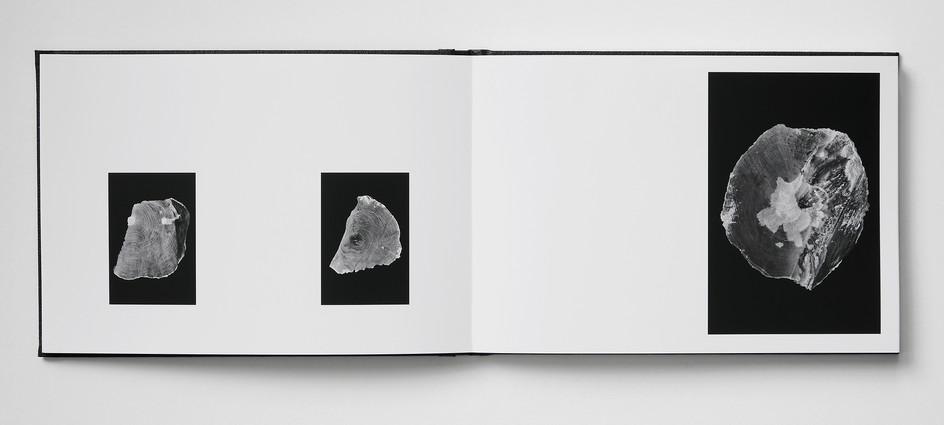Repros_Buch15.jpg