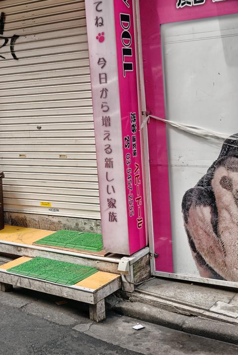 Tokio_2019_1409.jpg