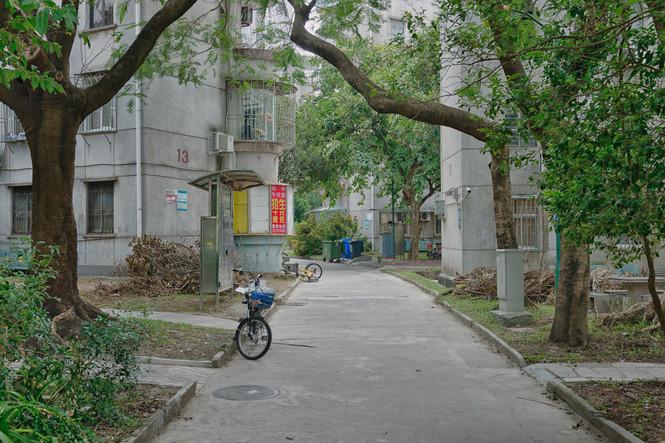 Shenzhen0153.jpg