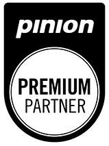 Pinion.png
