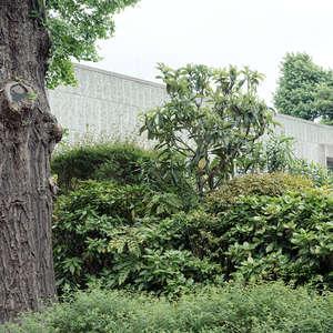 NATIONALMUSEUM FÜR WESTLICHE KUNST TOKYO