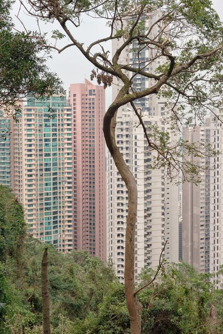 HongKong_0396.jpg