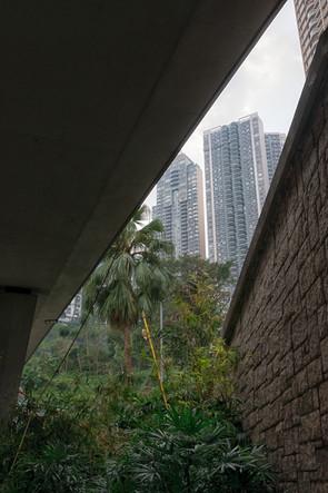 HongKong_0480.jpg