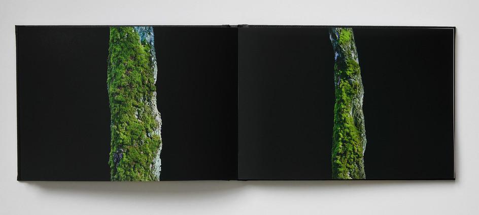 Repros_Buch36-1.jpg